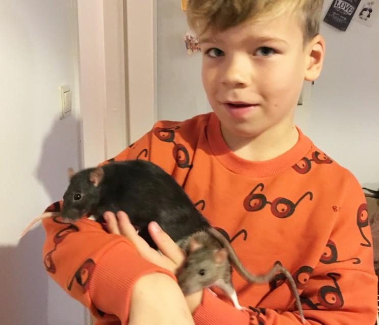 JERR BLOGT: SAMMIE DE RAT